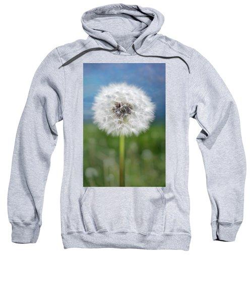 A Single Dandelion Seed Pod Sweatshirt