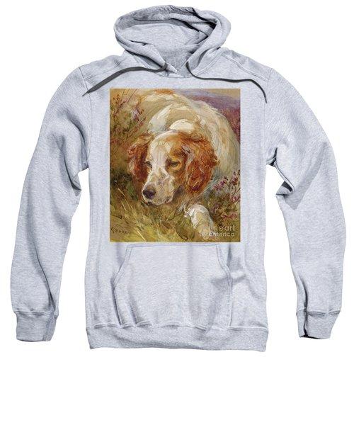 A Spaniel Sweatshirt