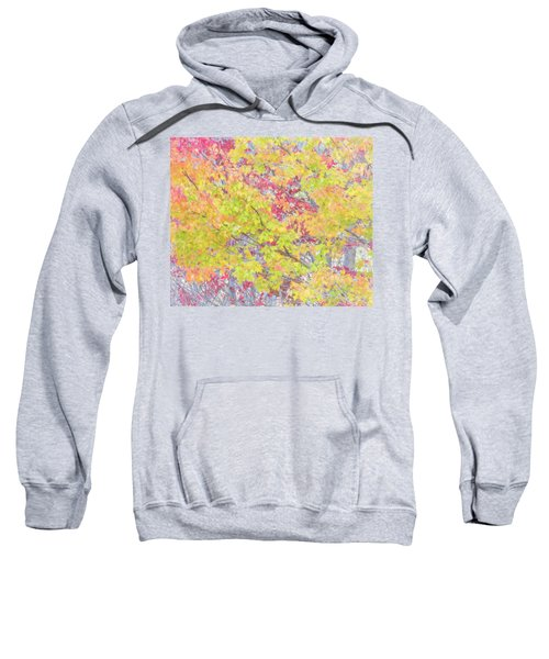 A Splash Of Color Sweatshirt
