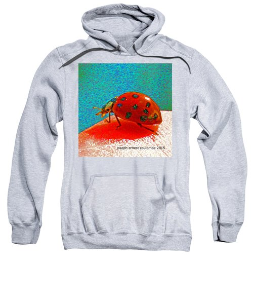 A Spring Lady Bug Sweatshirt