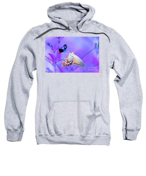 A Strange Butterfly Dream Sweatshirt