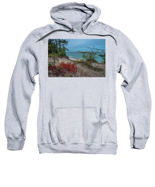 A Touch Of Color  Sweatshirt