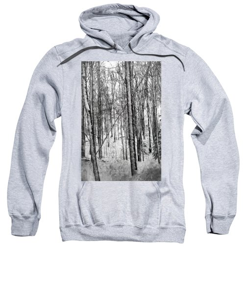 A Tree's View In Winter Sweatshirt