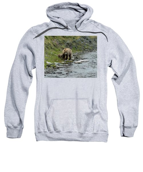 A Walk Along The Creek Sweatshirt