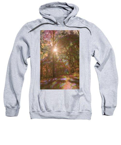 A Walk Through The Rainbow Forest Sweatshirt