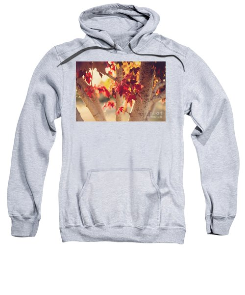 Sweatshirt featuring the photograph A Warm Red Autumn by Linda Lees