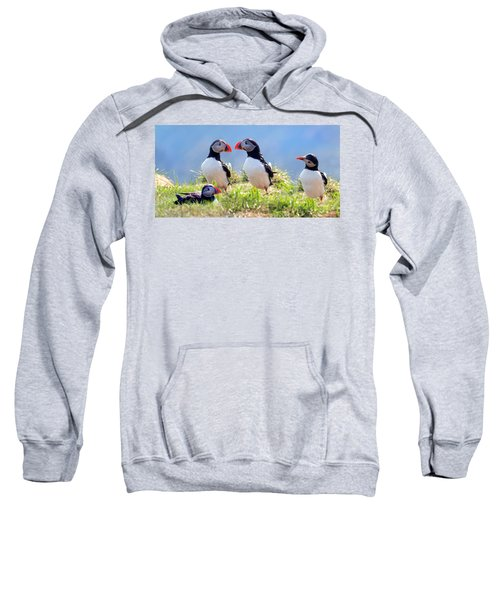 A World Of Puffins Sweatshirt