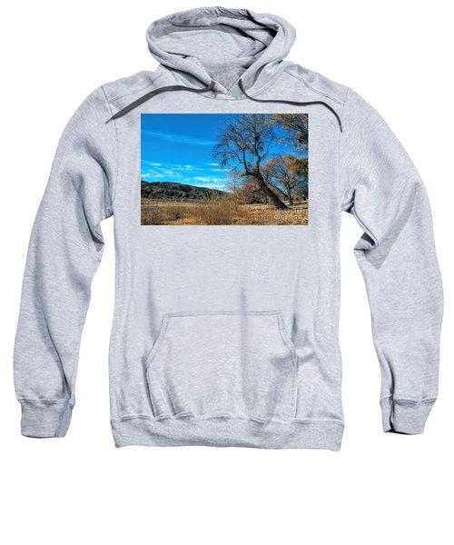 Forgotten Park Sweatshirt