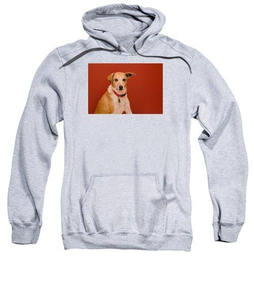 Abbie 1 Sweatshirt