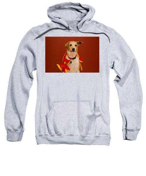 Abbie And Dragon Toy Sweatshirt