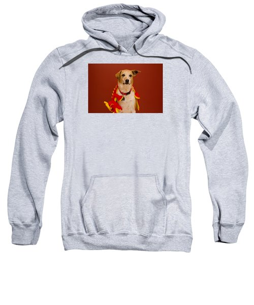 Abbie And Dragon Toy Sweatshirt