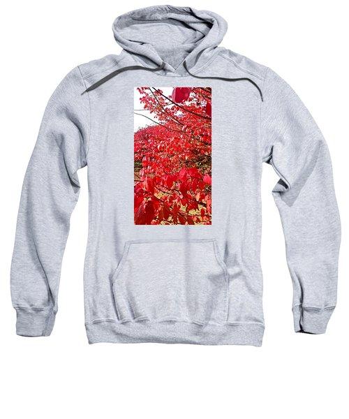Ablaze Sweatshirt