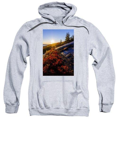 Above Bar Harbor Sweatshirt