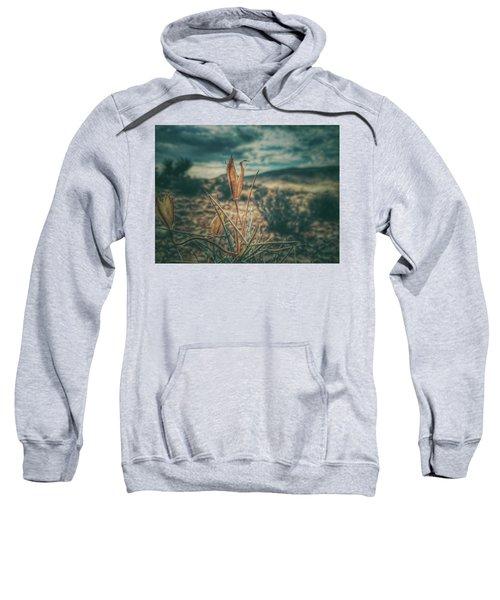 Remain Sweatshirt