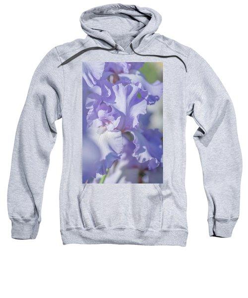 Absolute Treasure Closeup 2. The Beauty Of Irises Sweatshirt