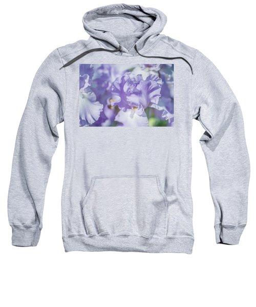 Absolute Treasure Closeup. The Beauty Of Irises Sweatshirt