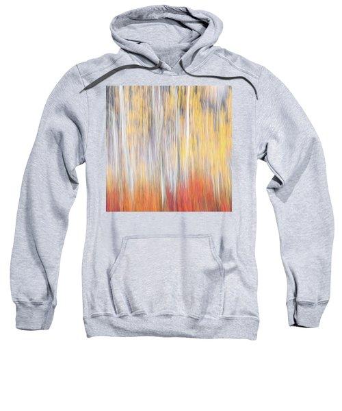 Abstract Autumn Sweatshirt