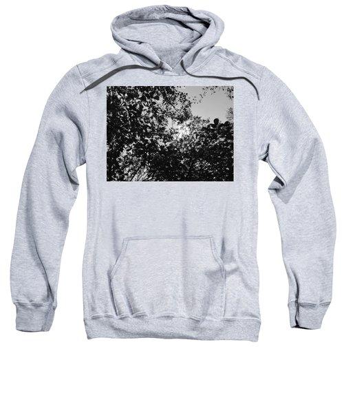Abstract Leaves Sun Sky Sweatshirt