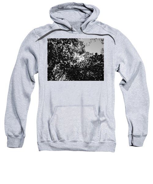 Abstract Leaves Sun Sky Sweatshirt