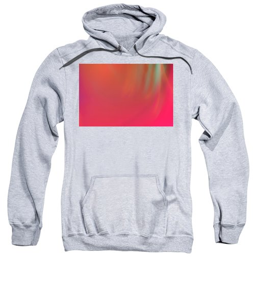 Abstract No. 16 Sweatshirt