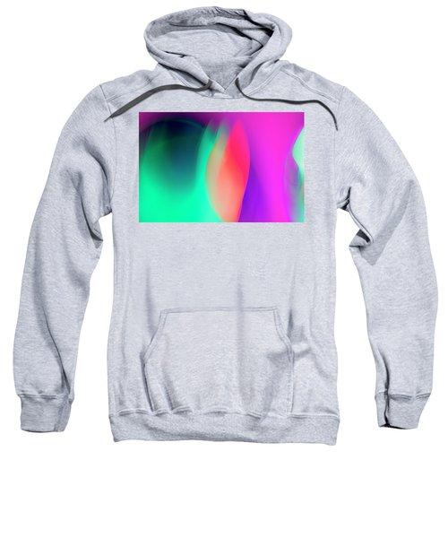 Abstract No. 6 Sweatshirt