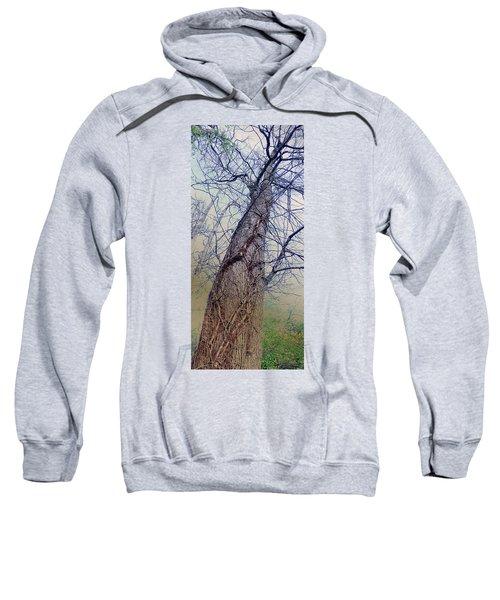 Abstract Tree Trunk Sweatshirt