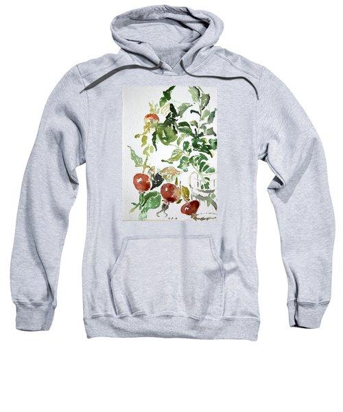 Abstract Vegetables Sweatshirt