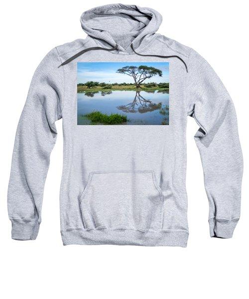 Acacia Tree Reflection Sweatshirt