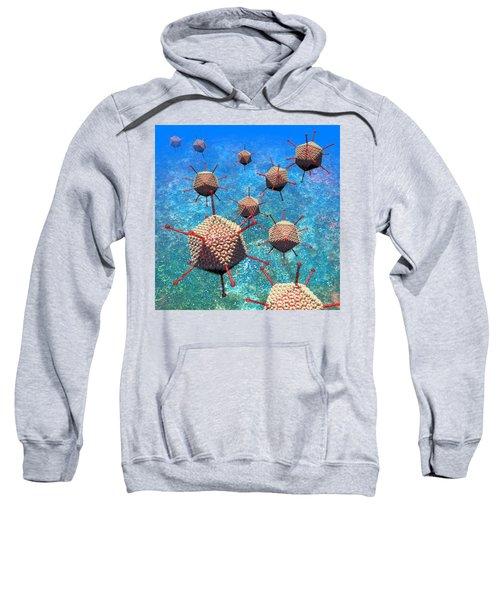 Adenovirus Particles 3 Sweatshirt