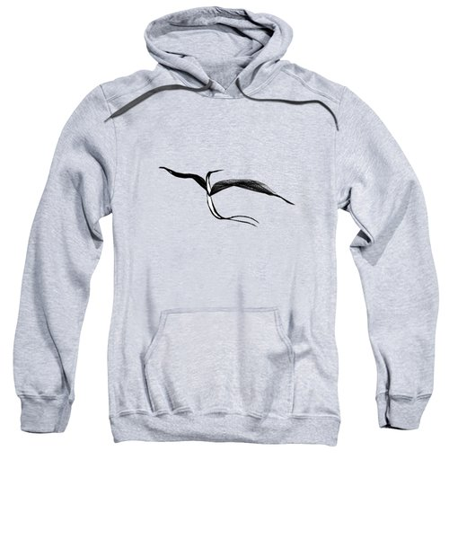 Aerial Delight Sweatshirt
