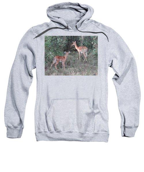 Africa - Animals In The Wild 2 Sweatshirt