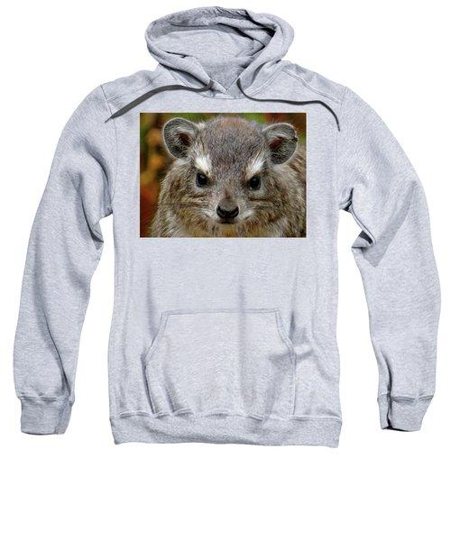 African Animals On Safari - A Child's View 6 Sweatshirt