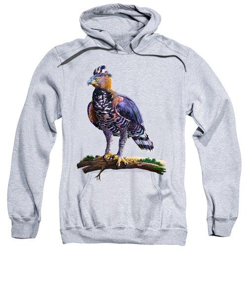 African Crowned Eagle  Sweatshirt
