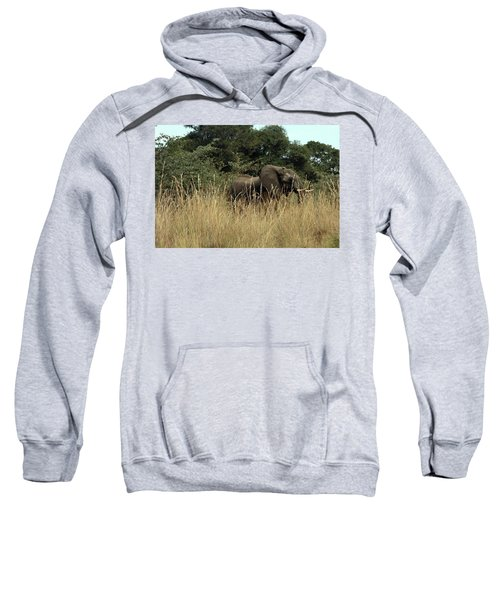 African Elephant In Tall Grass Sweatshirt