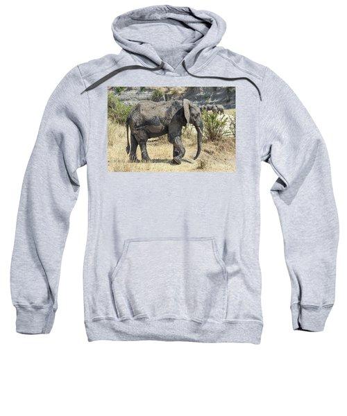 African Elephant Walking Sweatshirt