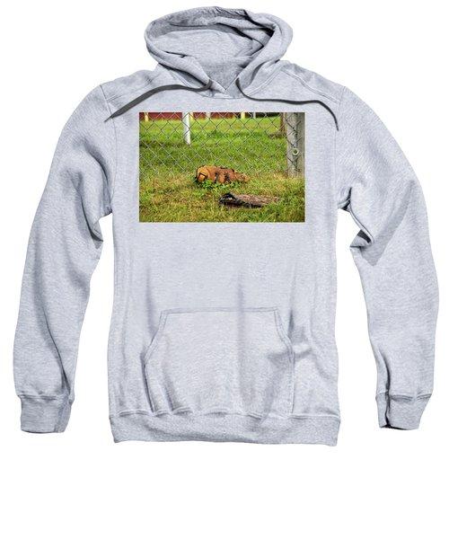 After Video Games Sweatshirt