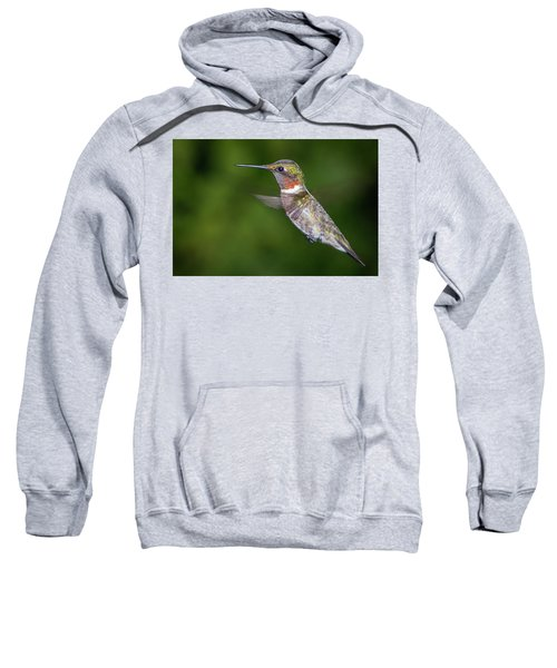 Ain't I Cute Sweatshirt