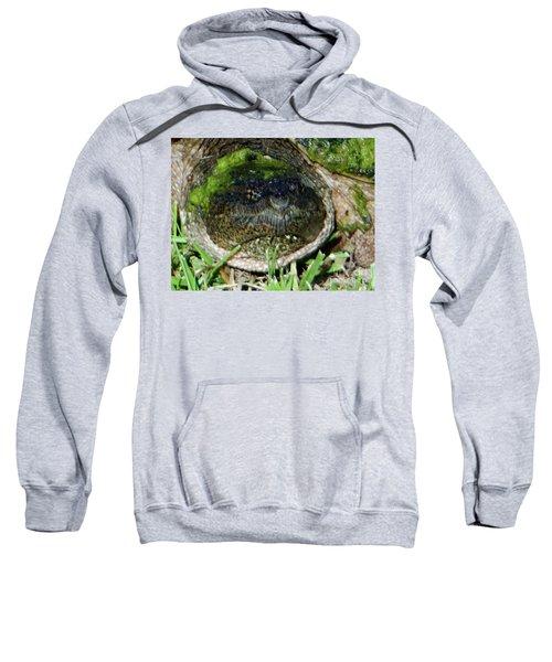 Algae Face Common Snapper Sweatshirt
