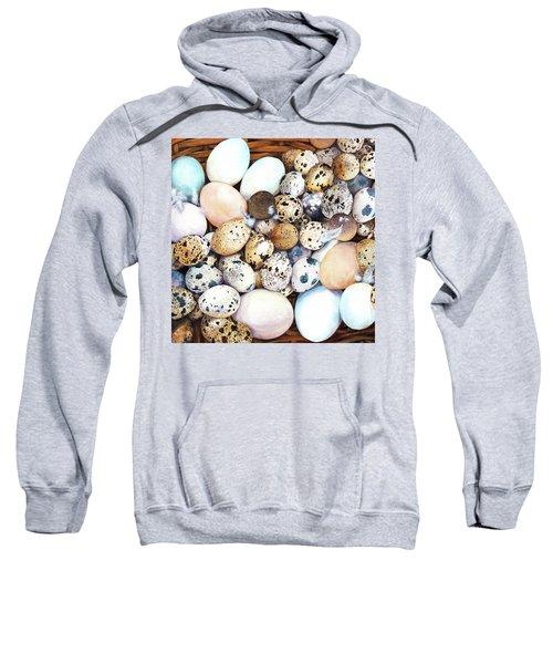 All My Eggs In One Basket Birds Egg Print Sweatshirt