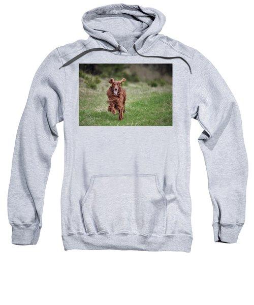 Allegro's March Sweatshirt