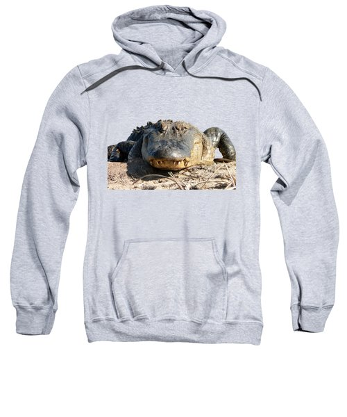 Alligator Approach .png Sweatshirt by Al Powell Photography USA