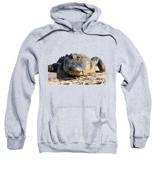 Alligator Approach .png Sweatshirt