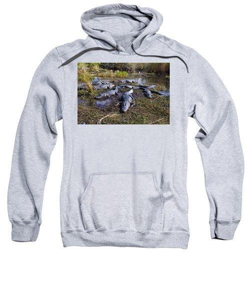 Alligators 280 Sweatshirt