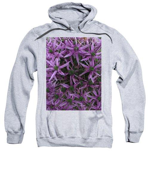 Allium Stars  Sweatshirt