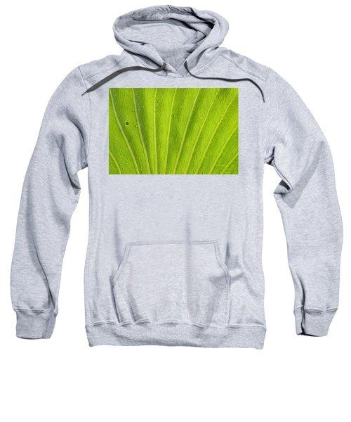 Almost Perfect Sweatshirt