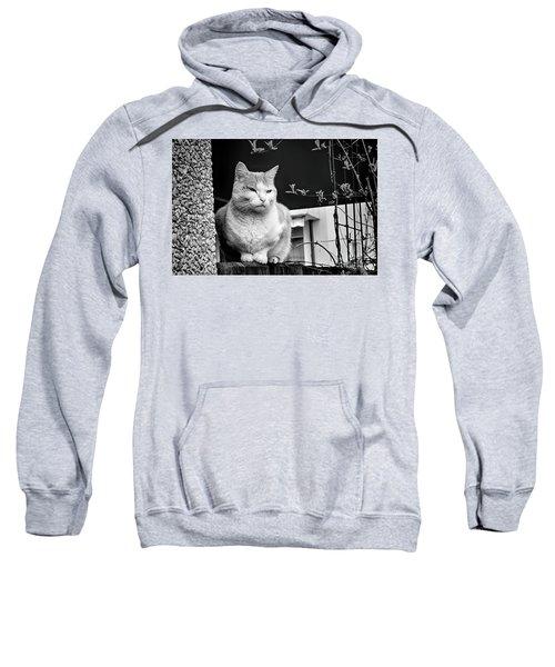 Aloof Sweatshirt