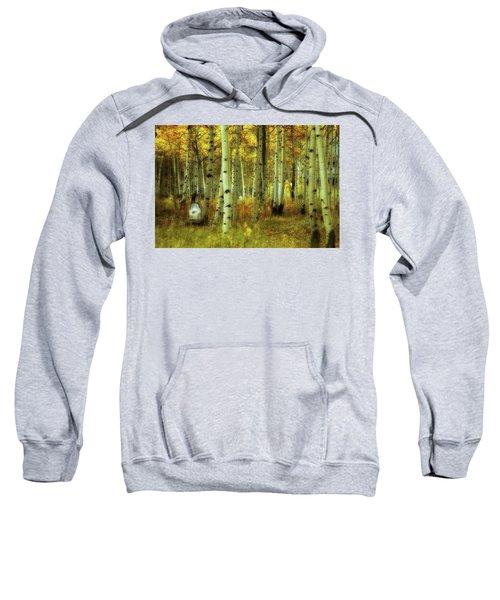 Alvarado Autumn 1 Sweatshirt