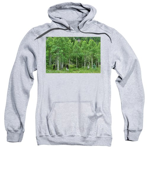 Alvarado Summer Sweatshirt