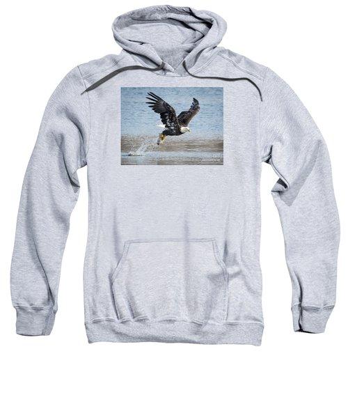American Bald Eagle Taking Off Sweatshirt by Ricky L Jones