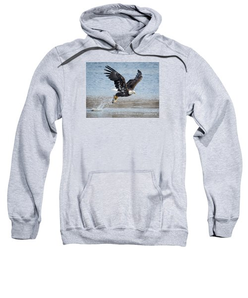 American Bald Eagle Taking Off Sweatshirt